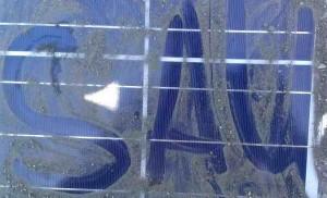 Solarreinigung nötig? Bild eines verschmutzten Solarmoduls
